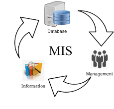 Why MIS is important for businesses?